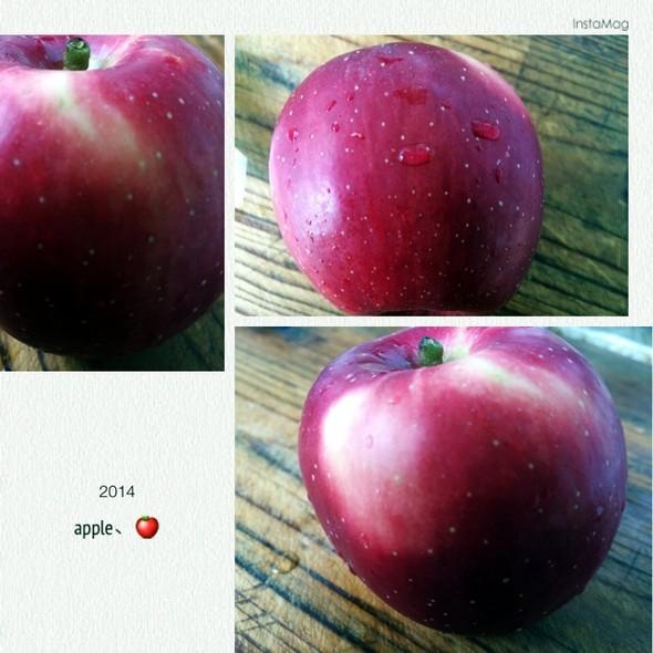 用豆子粘贴画苹果