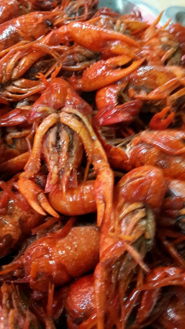 可爱滴小龙虾