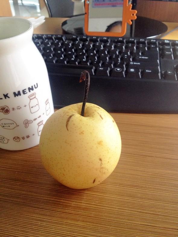 梨子_的美食日记_豆果网