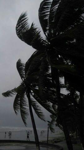 亚刮台风了