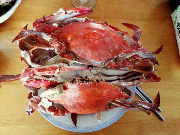 螃蟹蒸粉手绘图