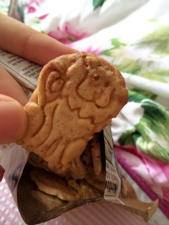零食 巧克力味有机小饼干